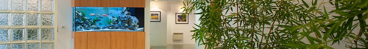 Cabinet d'Orthodontie - Dr. Siffermann - Mulhouse